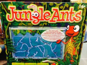 kidsholidaysjungleants