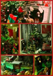 charlie bear window collage-1